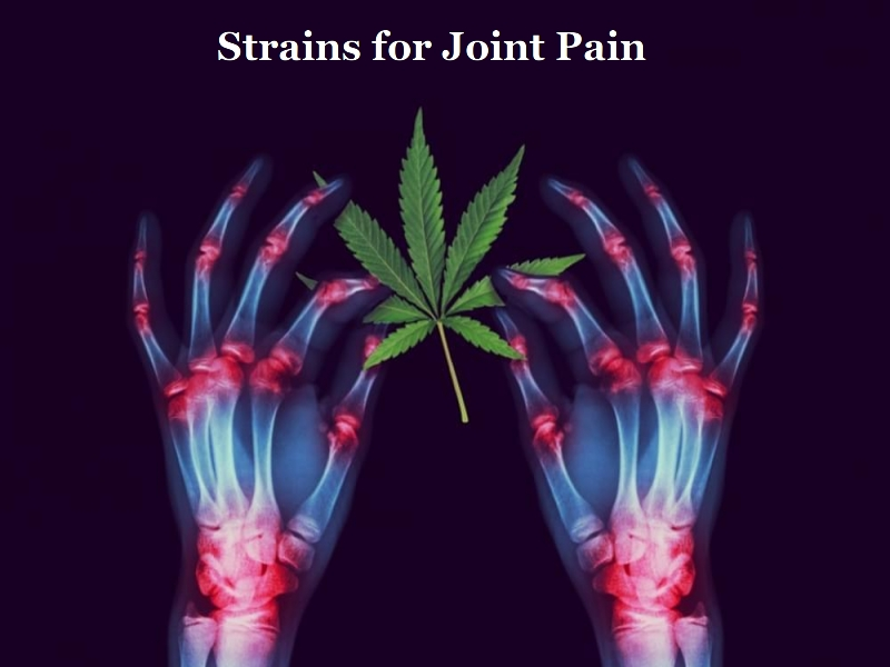 Strains for Joint Pain